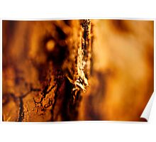 Natural abstracts Poster