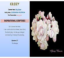 GLORY Photographic Print