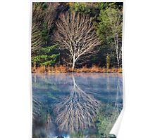 Mirror Mirror on the Pond - Turee Pond - Bow, NH 10-29-13 Poster