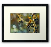 When The Night. Framed Print