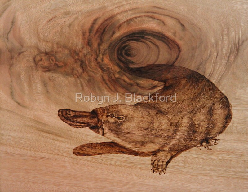 """PYROGRAPHY Platypus"" by aussiebushstick"
