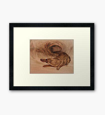 PYROGRAPHY: Platypus Framed Print