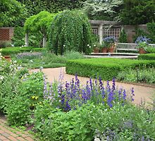 Botanic Gardens-English Walled Garden by Kathie  Chicoine