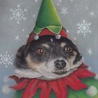 A Furry Christmas Elf by Pam Humbargar