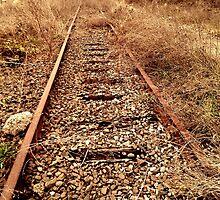 Forgotten by photosbyliz