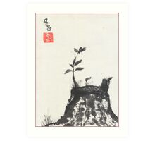 Old Stump Art Print