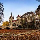 Vajdahunyad Castle by Zoltán Duray