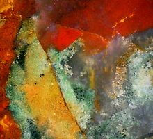 Gallery (Fancy Jasper) by Stephanie Bateman-Graham