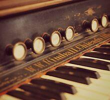 Vintage Organ Keys by Kimberose