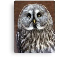 Disapproving look  Canvas Print