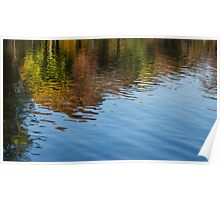 Reflecting on Autumn - Washington, DC Poster