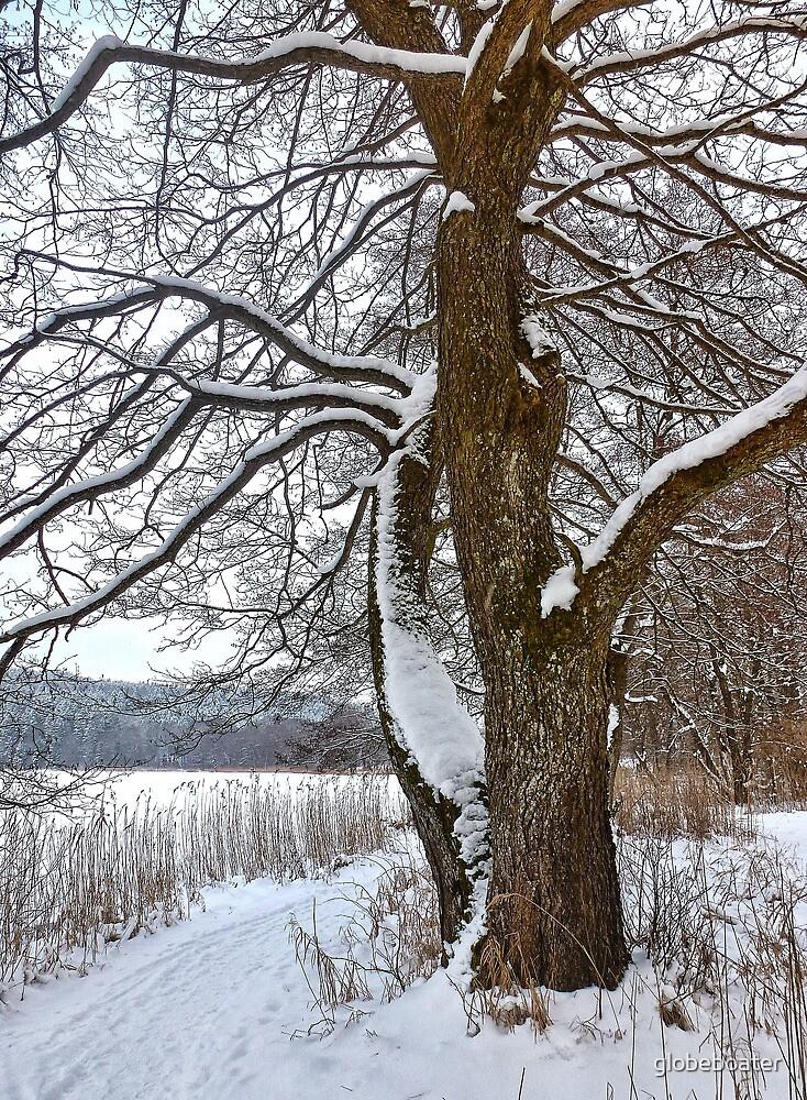 Winter Coat by globeboater