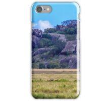 Simba Kopje iPhone Case/Skin