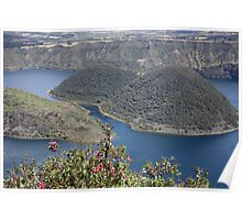 Lake Cuicocha Through Flowers Poster