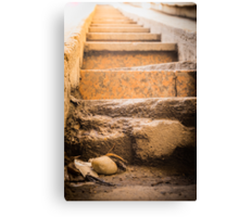 Steps to the shine Canvas Print