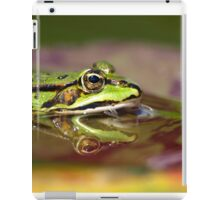 Pond Reflections iPad Case/Skin