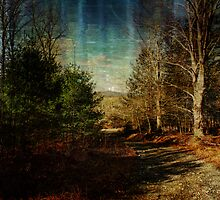 A Path in the Mountains by PineSinger