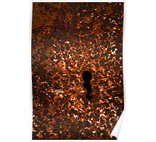 iron rusty keyhole Poster