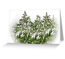 pine trees with snowflakes in soft white frame Greeting Card