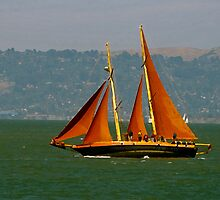 Come Sail Away by damhotpepper