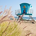 Malibu Lifeguard Tower on the beach by damhotpepper