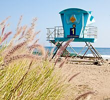 Malibu Lifeguard Tower on the beach by damhotpepper