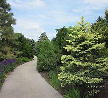 Walking through the Evergreen Garden by Kathie  Chicoine