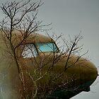 Into the Mist by Cee Neuner