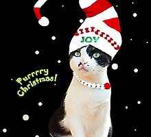 Purrrrrrry Christmas! by OnnDeCats