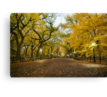 Central Park - Autumn -  Literary Walk - New York City Canvas Print