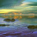 Evening Swim by Igor Zenin