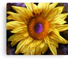 Autumn Sunflower Canvas Print