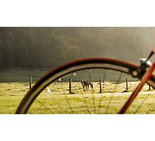 Horse and Bike Photographic Print