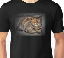 Rest in the last rays of the sun Unisex T-Shirt