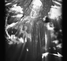 ©DA Angel IIAE Monochromatic by OmarHernandez
