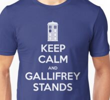 KEEP CALM and Gallifrey stands Unisex T-Shirt