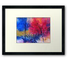 Colori nel bosco Framed Print