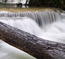 Log Bridge to waterfall by Kenji Ashman