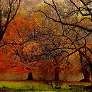 The Autumn Shores of Grasmere and Loughrigg Tarn .. by Mike  Waldron
