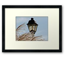 Grass and Lamp Framed Print