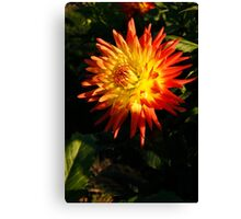 Multi Colored Flower Canvas Print