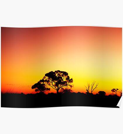 pink sunset Poster