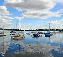 Lake Harriet Reflections by stilgar