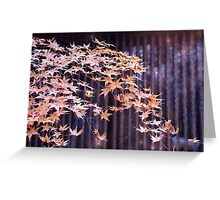 Leaves, light and painted louvres Greeting Card
