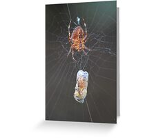 Spiders aren't so bad now that they eat bees Greeting Card