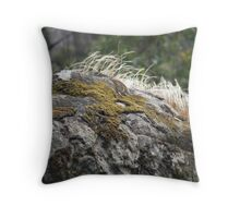 Mosses, rocks and grasses Throw Pillow