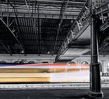 A Flash of Colour by John Sharp