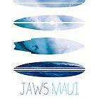 My Surfspots poster-1-Jaws-Maui by Chungkong