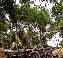 Australian History by jwwallace
