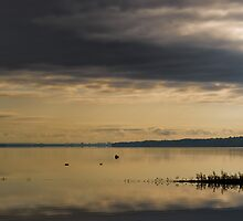 Ottawa River on a still morning by Mike Bachman